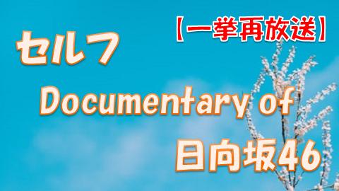 セルフDocumentary of 日向坂46